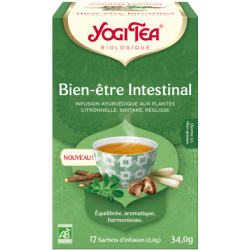INFUSION BIEN-ETRE INTESTINAL (17 INFUSETTES)